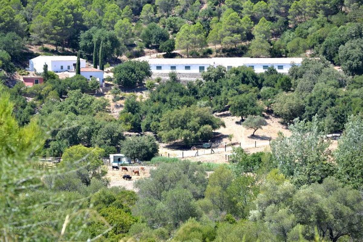 2 bedroom Apartment for sale in Nueva Andalucía – R2274575