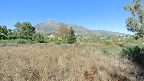 Plot for sale in The Golden Mile – R3275275