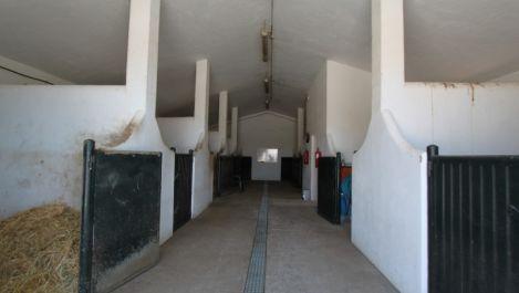 4 bedroom Finca for sale in Sotogrande Alto – R881163