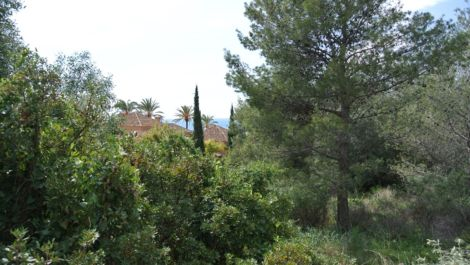 Plot for sale in Sierra Blanca – R2373281