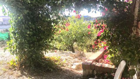 2 bedroom Finca for sale in Estepona – R3553732