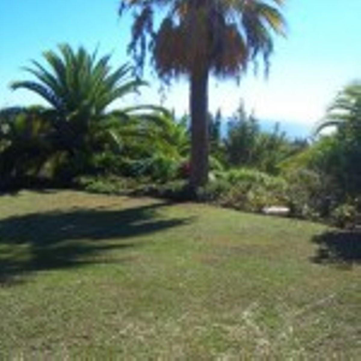 Plot for sale in Sierra Blanca – R2439029