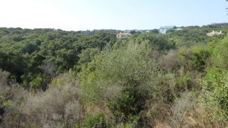 Plot for sale in Sotogrande Alto – R1988178 in