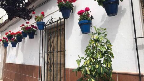 3 bedroom Townhouse for sale in Estepona – R3178663